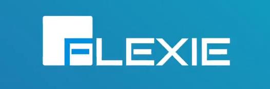 Flexie demo introduction