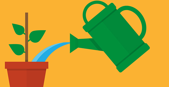 Top 5 most effective ways to nurturing leads